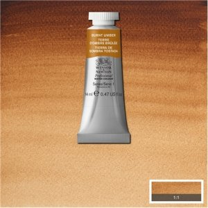 Burnt Umber Awc Winsor & Newton 14ml