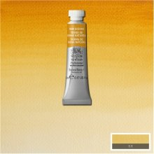 Raw Sienna Awc Winsor & Newton 5ml