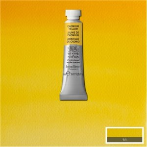 Cadmium Yellow Awc Winsor & Newton 5ml