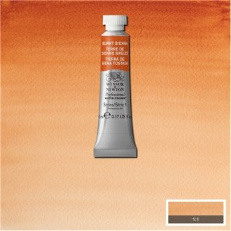 Burnt Sienna Awc Winsor & Newton 5ml