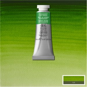 Permanent Sap Green Awc Winsor & Newton 14ml