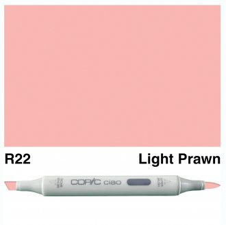 Copic Ciao R22