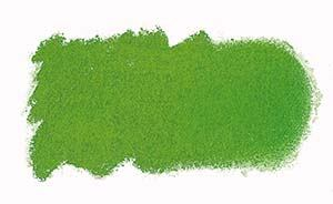 N573 Grass Green Art Spectrum Soft Pastels