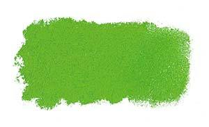 P573 Grass Green Art Spectrum Soft Pastels