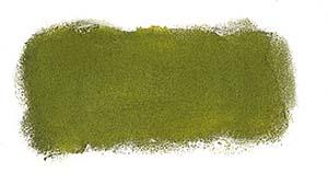 N579 Greenish Umber Art Spectrum Soft Pastels